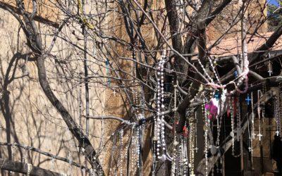 The Rosary Tree