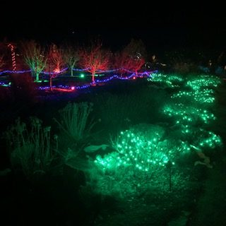 A glowing path through Santa Fe Garden Glow
