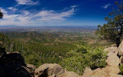 Hiking Up High